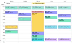 get oranized calendar